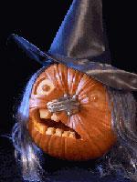 Calabaza bruja (de www.extremepumpkin.com)