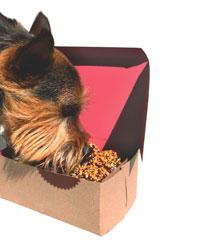 Cupcakes para perros